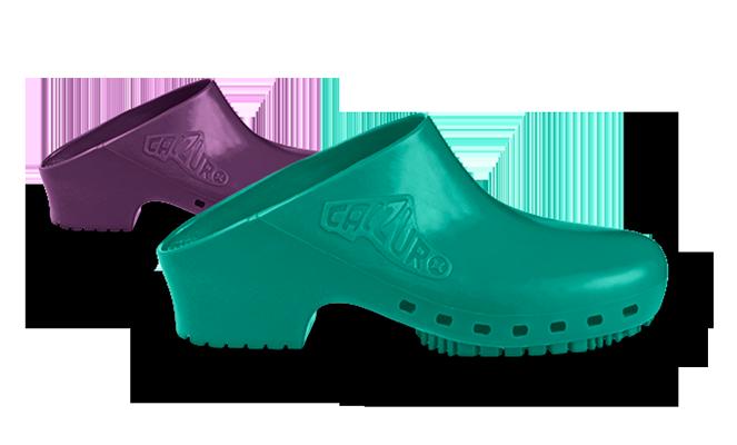 Zapatos de Ánade