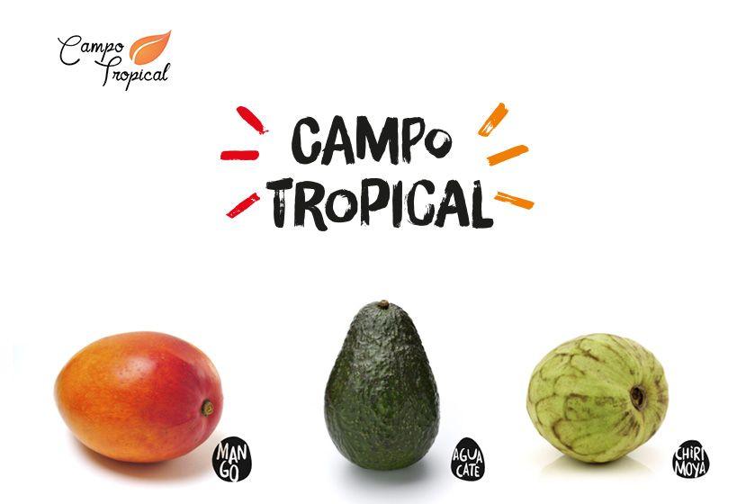 Campo Tropical nueva imagen