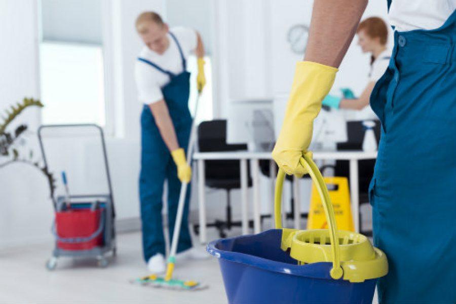 Entrevista a Domesting: La startup gallega que está transformando el sector de la limpieza